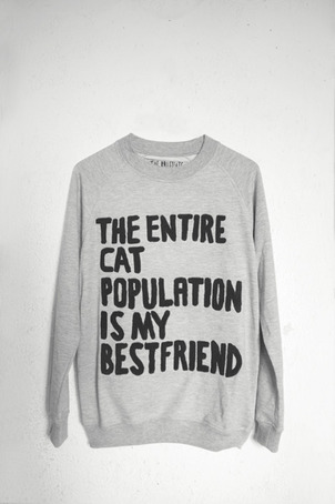 THE ENTIRE CAT POPULATION IS MY BESTFRIEND SWEATER on The Hunt