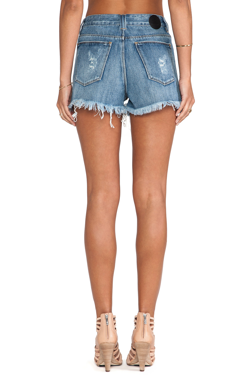 RES Denim Kitty Cutoff Shorts in Phoenix   REVOLVE