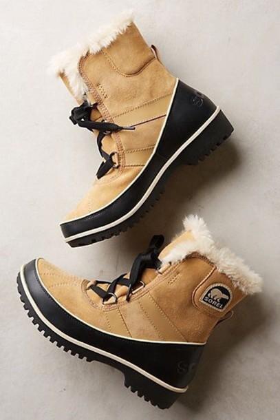 shoes sorel boots