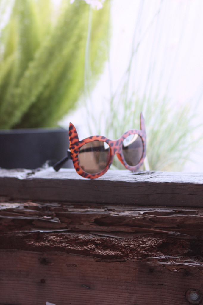 Cat Ear Sunglasses - Leopard   Obsezz
