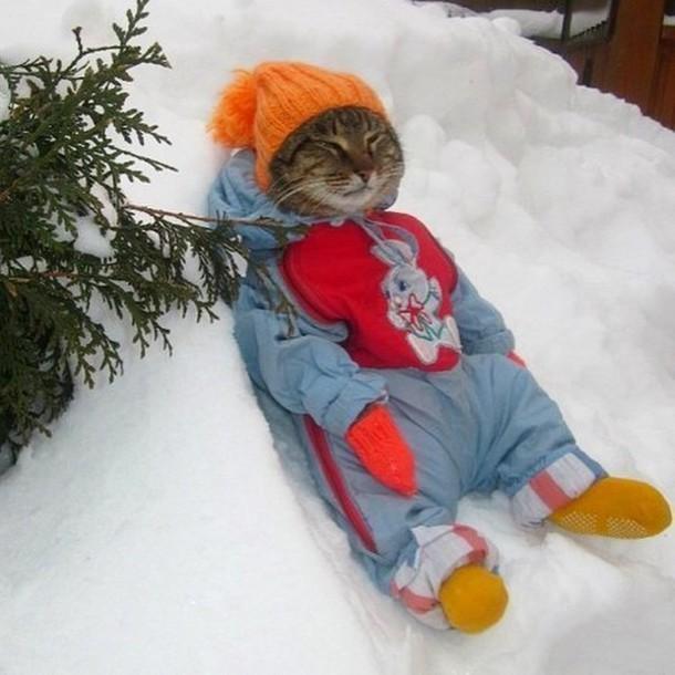 do the hotpants blogger winter sports animal clothing pom pom beanie