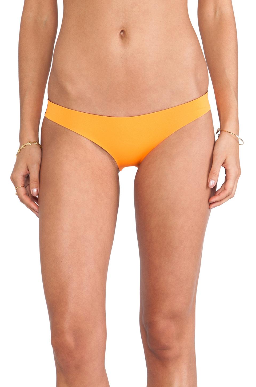 N.L.P Brazilian Neoprene Bottom in Dayglow Orange | REVOLVE
