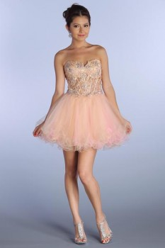 Corset Short Prom Dress in Champagne/Pink