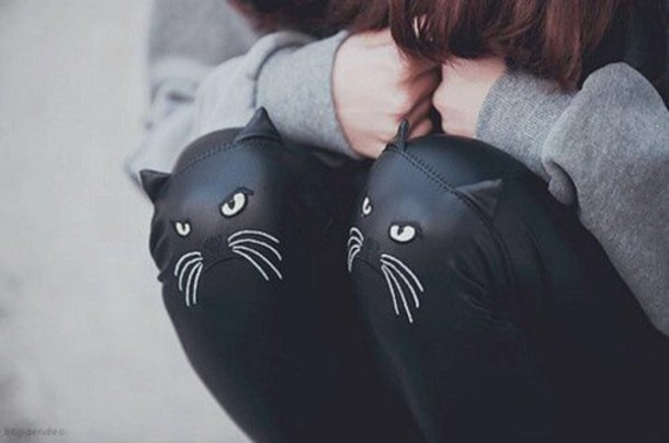 leggings cats pants beautiful legs girl cats thanks
