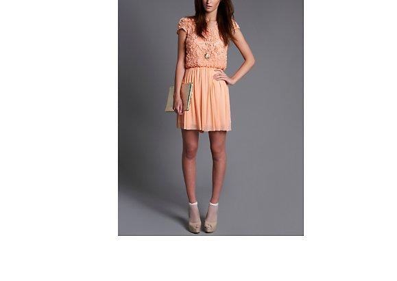 Rare Rose Bodice Skater Dress - BANK Fashion