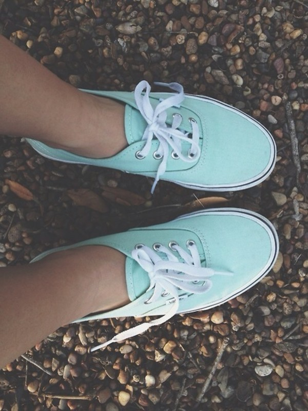 shoes blue sneakers skater