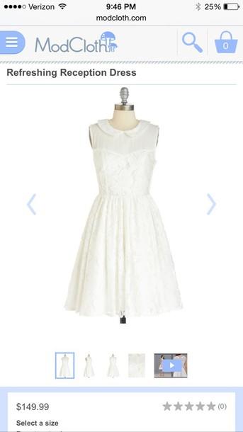 dress white lace collared dress