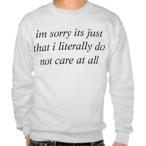 big dont care pullover sweatshirt | Zazzle.co.uk