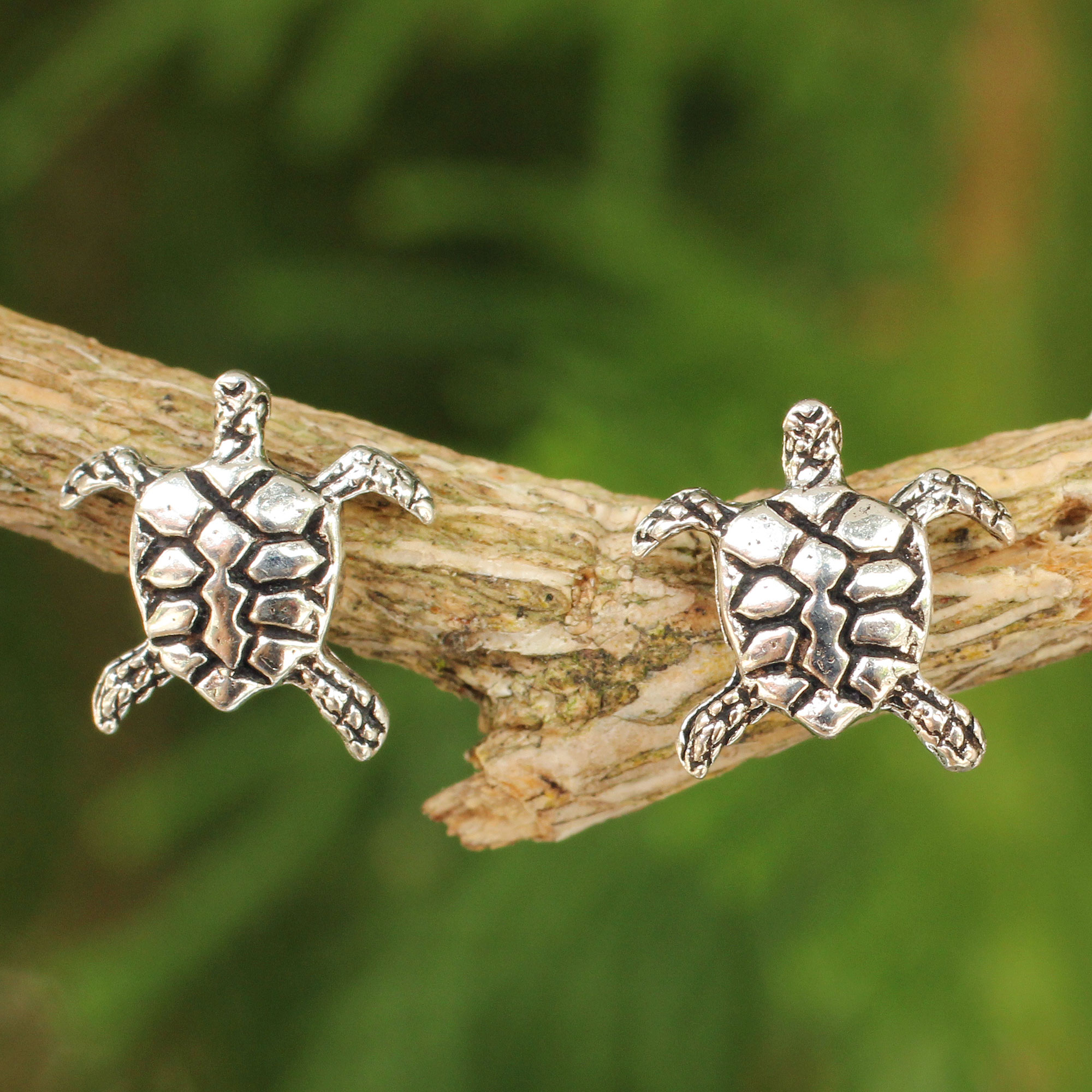 Sterling Silver Button Earrings - Baby Sea Turtle | NOVICA