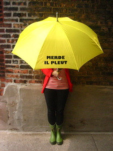 Merde Il Pleut Umbrellas by RedWalrusShoppe on Etsy