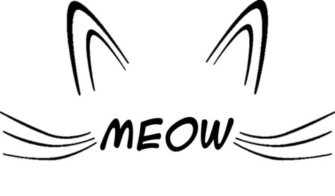 Meow Cat Face Vest Top Or T Shirt   Cheap Funny T Shirts ~  Pop Culture T Shirts ~ Baby Onesies ~ Xray Skeleton Baby Tops ~ Funny Maternity Tops