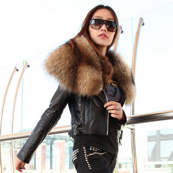 new arrival 2013 winter suger large real raccoon fur collar sheepskin genuine leather jacket short slim genuine leather coat 40-inBasic Jackets from Apparel & Accessories on Aliexpress.com