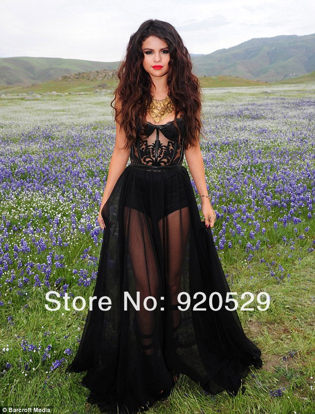 2013 Selena Gomez Dress Sexy Sweetheart See Through A line Floor length Black Chiffon Celebrity Dresses For Celebrity New Design-in Celebrity-Inspired Dresses from Apparel & Accessories on Aliexpress.com