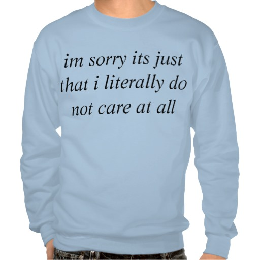 big dont care pullover sweatshirt from Zazzle.com