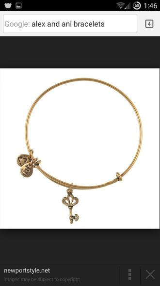 jewels alex and ani charm bracelet