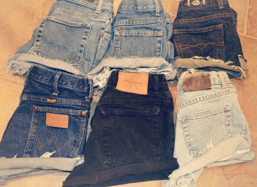The 'Cuffed' Shorts - Nerdy Youth