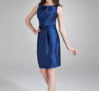 dress clothes blue cute pretty decent cats dog dreamdress silk satin