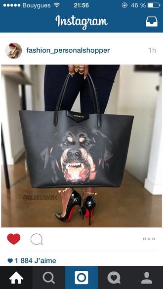 bag black dog